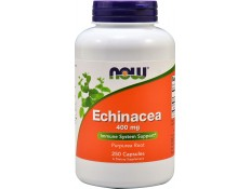 NOW Echinacea (purpurea) Root 400 mg.  - 100 capsule