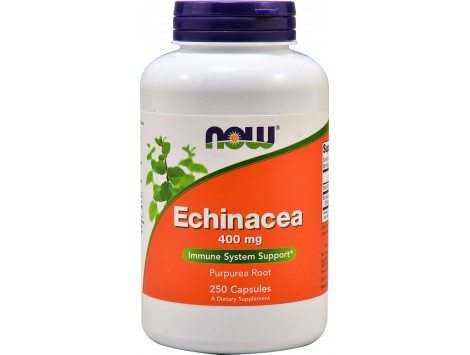 NOW Echinacea Root 400mg (Purpurea) - 100 caps.